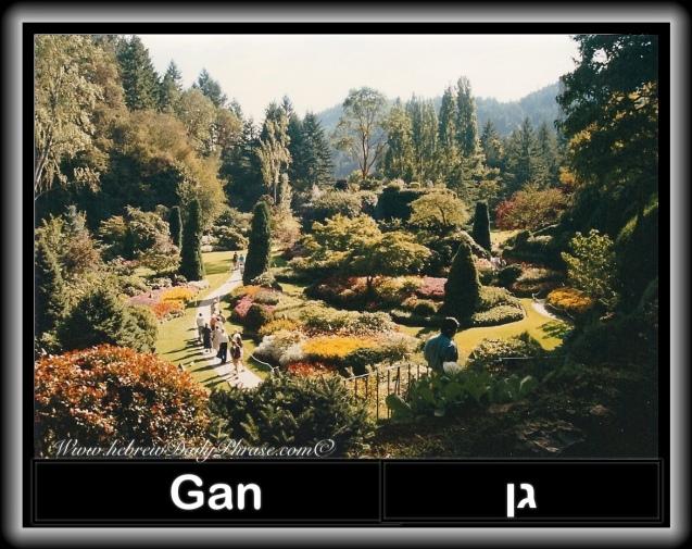 Garden gan גן