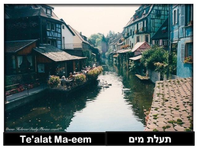 canal - te'alat ma-eem - תעלת מים